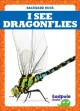 Cover for I See Dragonflies