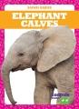 Cover for Elephant Calves