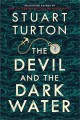 Cover for The devil and the dark water
