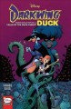 Cover for Darkwing Duck comics collection. Vol. 2, Tales of the duck knight