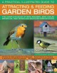 Cover for A Practical Illustrated Guide to Attracting & Feeding Garden Birds: The Com...