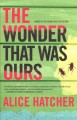 Cover for The wonder that was ours: a novel