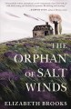 Cover for The orphan of Salt Winds