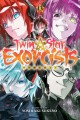 Cover for Twin star exorcists. 13
