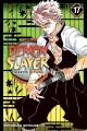 Cover for Demon slayer = kimetsu no yaiba. 17, Successors