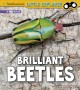 Cover for Brilliant beetles: a 4D book