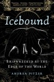 Cover for Icebound: shipwrecked at the edge of the world