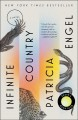 Cover for Infinite country: a novel