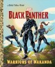 Cover for Black Panther: warriors of Wakanda
