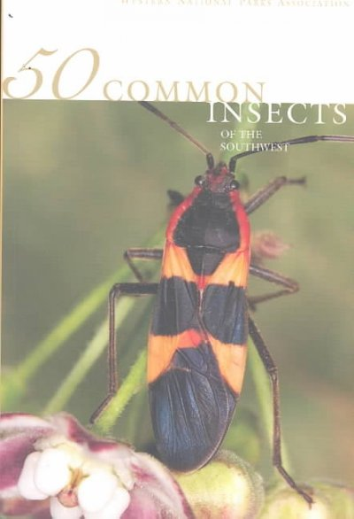 50 Common Insects of the Southwest
