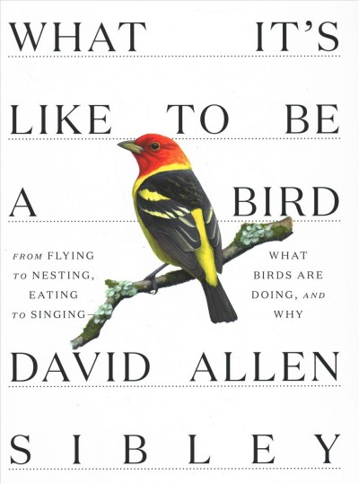 Cover of What It's Like to Be a Bird