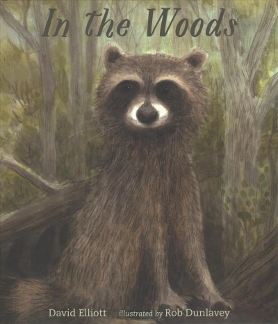 Cover of In the Woods