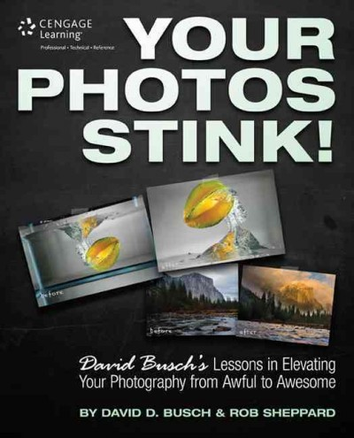 Cover of Your Photos Stink!: David Busch's Lessons in Elevating Your Photography from Awful to Awesome