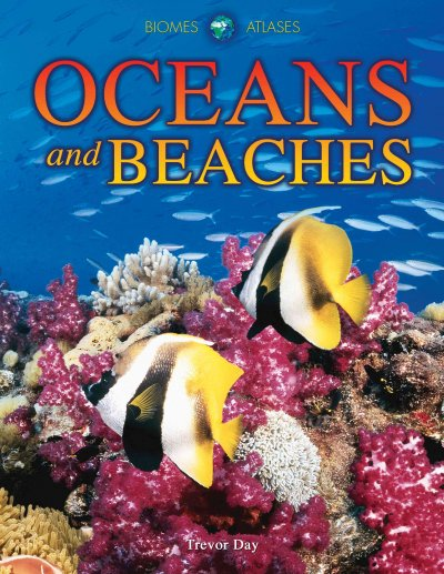 Cover of Oceans and Beaches
