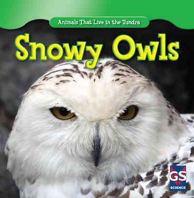 Cover of Snowy Owls
