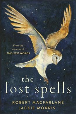 Cover of The Lost Spells