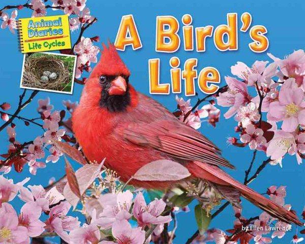 Cover of A Bird's Life