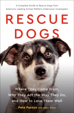 Cover of Rescue Dogs: Where they come from, why they act the way they do, and how to love them well