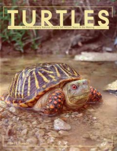 Cover of Turtles: An extraordinary natural history 245 million years in the making