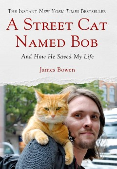 Cover of A Street Cat Named Bob: And How He Saved My Life
