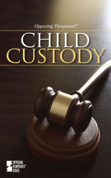 Child Custody - Dedria Bryfonski