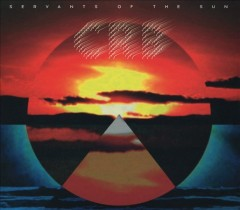 Servants of the Sun -  Chris Robinson Brotherhood