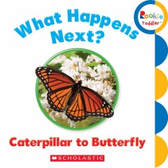 What happens next? : caterpillar to butterfly