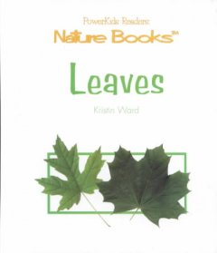 Leaves - Kristin Ward