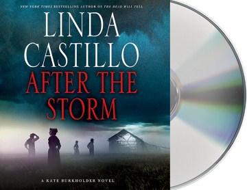 After the storm - Linda Castillo