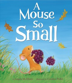 A mouse so small - Angela McAllister