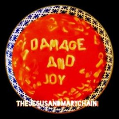 Damage and joy -  Jesus & Mary Chain (Musical group)