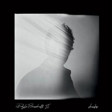 Shades - Doyle Bramhall