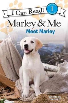 Meet Marley - Natalie Engel
