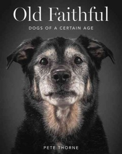 Old faithful : dogs of a certain age - Pete Thorne