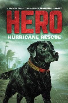 Hurricane Rescue - Jennifer Li Shotz