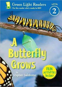 A butterfly grows - Stephen R Swinburne