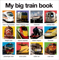My big train book.