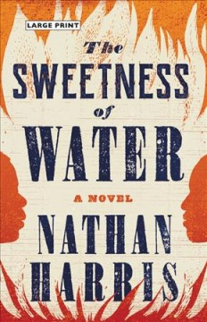 Sweetness of Water - Nathan Harris