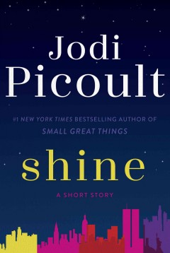 Shine - Jodi Picoult