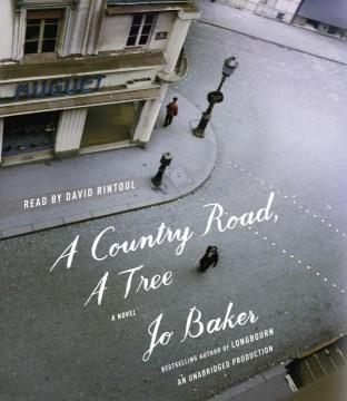 A country road, a tree : a novel - Jo Baker
