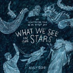 What We See in the Stars : An Illustrated Tour of the Night Sky - Kelsey Oseid