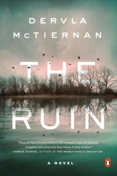 The ruin - Dervla Mctiernan