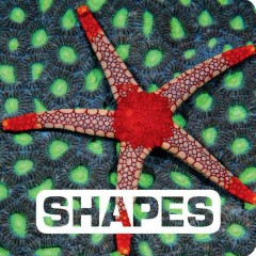 Shapes - Judith Nouvion