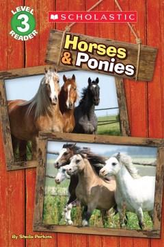 Horses & ponies - Sheila Perkins