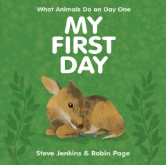 My first day - Steve Jenkins