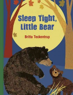 Sleep tight, Little Bear - Britta Teckentrup