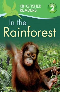 In the rainforest - Claire Llewellyn