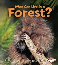 What can live in a forest? - Sheila Anderson