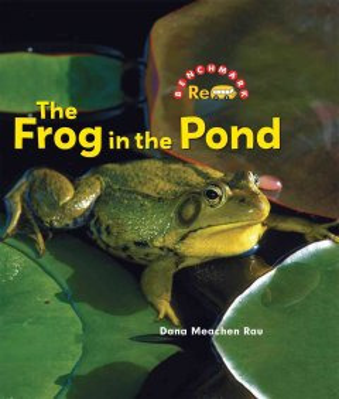 The frog in the pond - Dana Meachen Rau