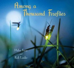 Among a thousand fireflies - Helen Frost